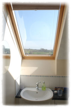 The attic room bathroom with a great country view